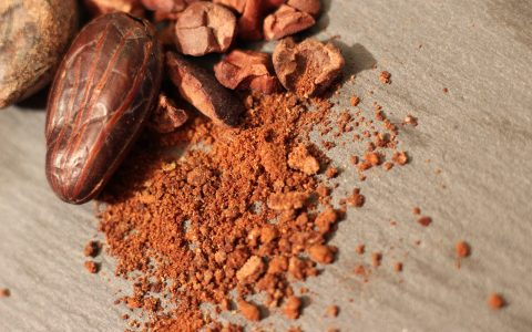 Cocoa Cacao Chocolate Food Sweet  - janiceweirgermia / Pixabay